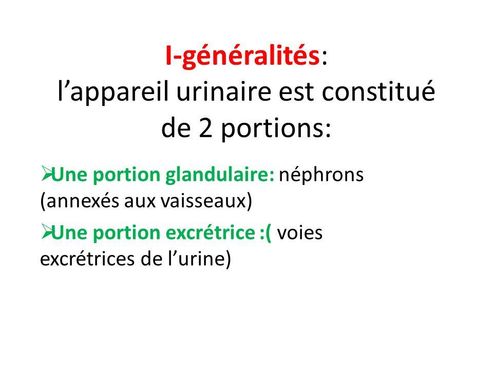 I-généralités: l'appareil urinaire est constitué de 2 portions:
