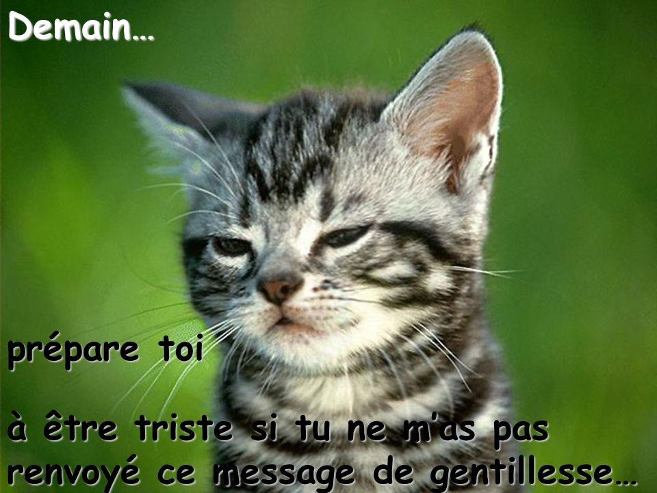 Demain… prépare toi à être triste si tu ne m'as pas renvoyé ce message de gentillesse…