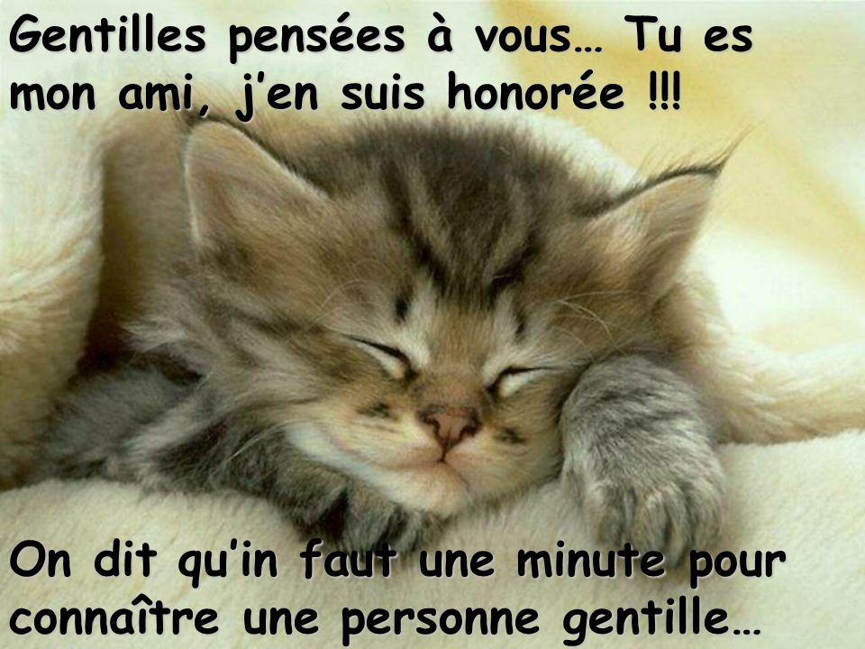Gentilles pensées à vous… Tu es mon ami, j'en suis honorée !!!