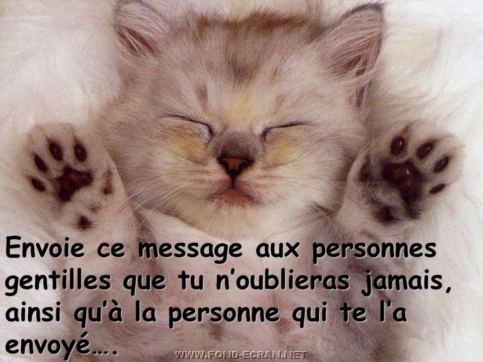 Envoie ce message aux personnes gentilles que tu n'oublieras jamais, ainsi qu'à la personne qui te l'a envoyé….