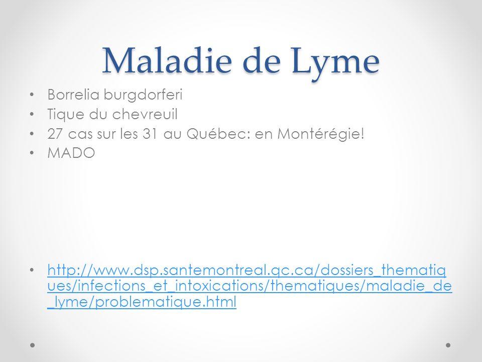 Maladie de Lyme Borrelia burgdorferi Tique du chevreuil