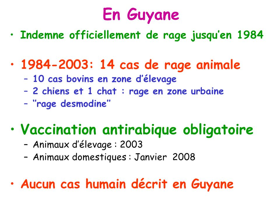 En Guyane Vaccination antirabique obligatoire