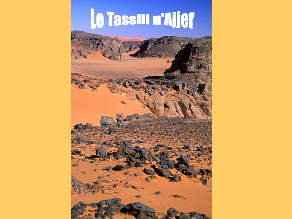 Le Tassili n Ajjer