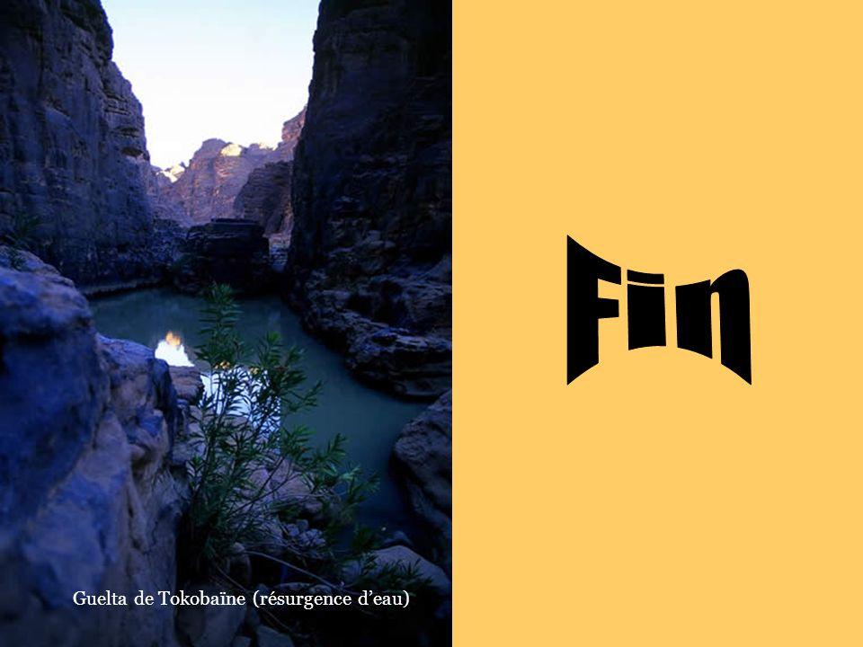 Fin Guelta de Tokobaïne (résurgence d'eau)