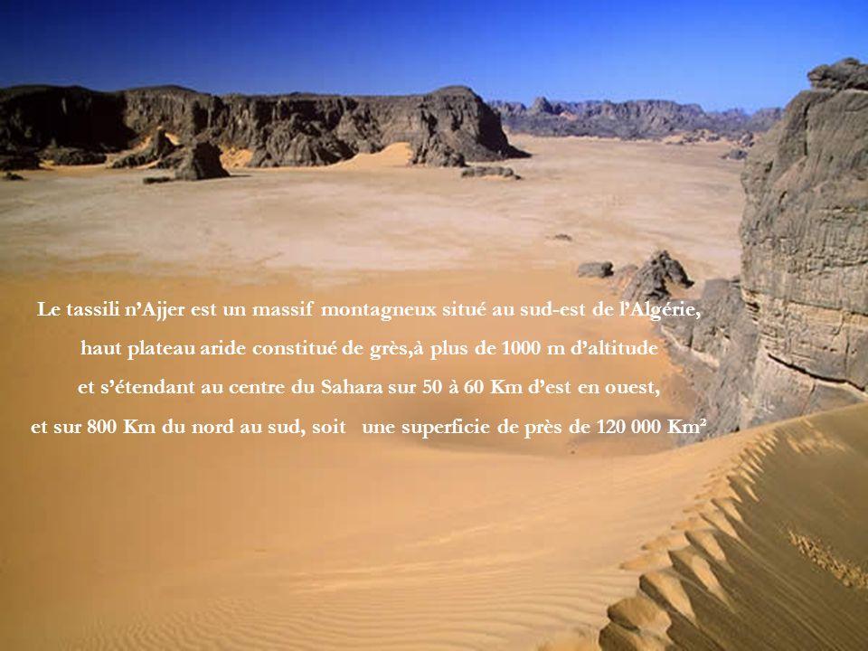 haut plateau aride constitué de grès,à plus de 1000 m d'altitude
