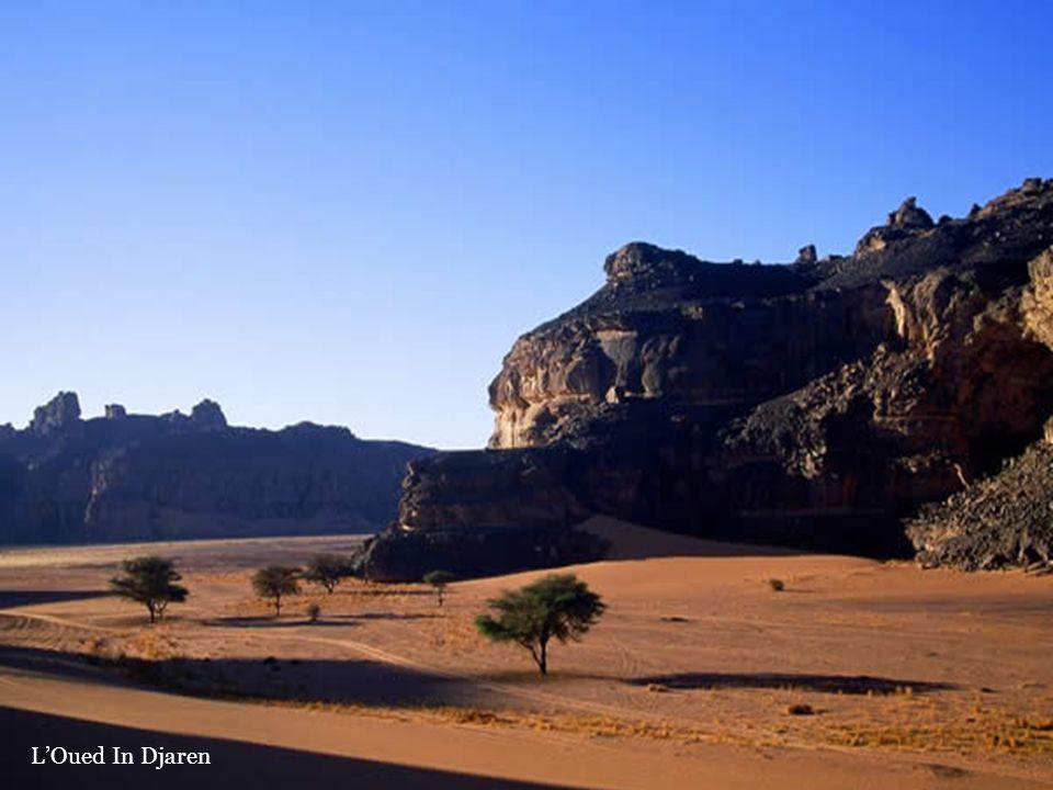 L'Oued In Djaren