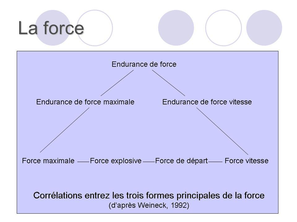 La force Il est possible de distinguer :