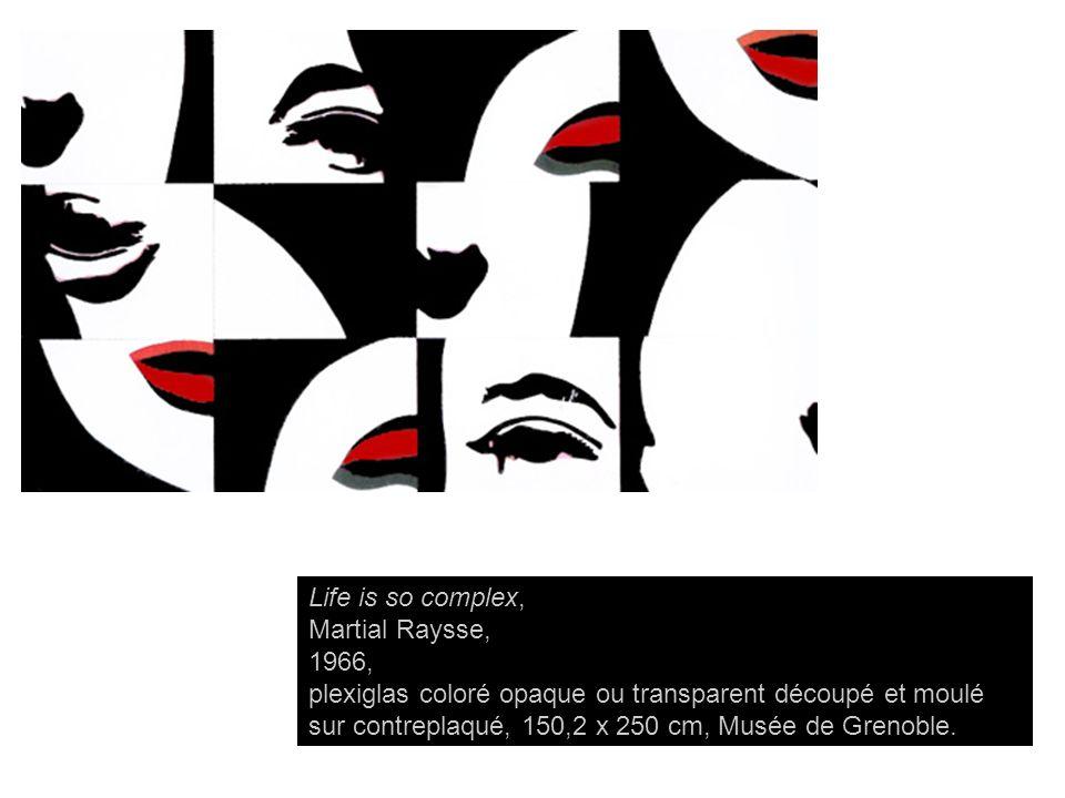 Life is so complex, Martial Raysse, 1966, plexiglas coloré opaque ou transparent découpé et moulé sur contreplaqué, 150,2 x 250 cm, Musée de Grenoble.