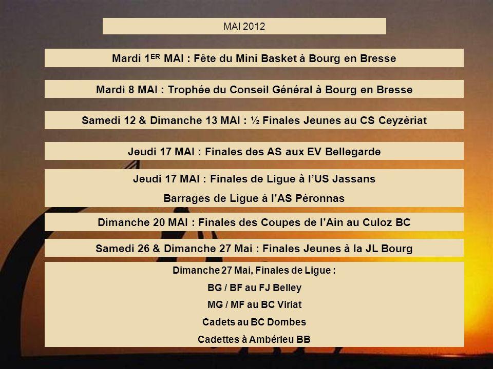 Mardi 1ER MAI : Fête du Mini Basket à Bourg en Bresse
