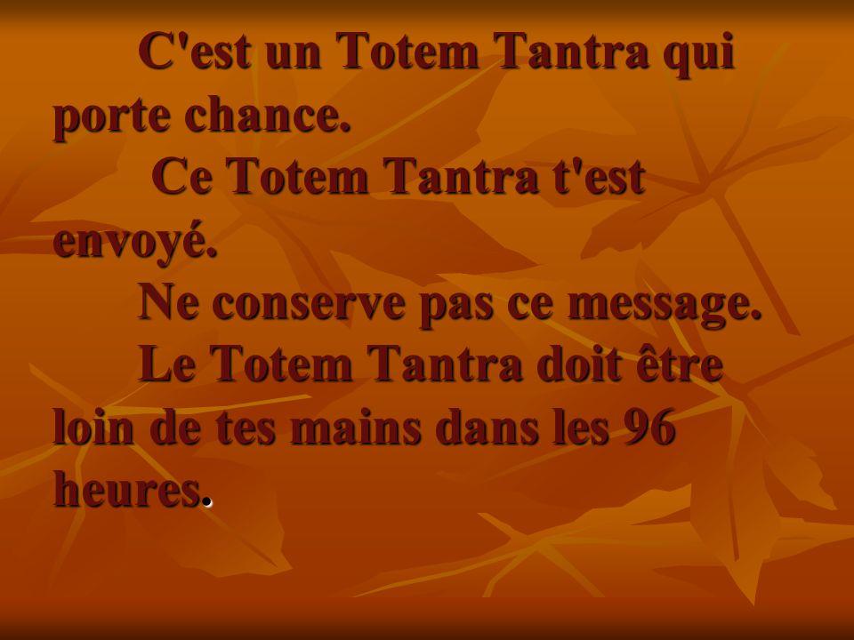 C est un Totem Tantra qui porte chance. Ce Totem Tantra t est envoyé