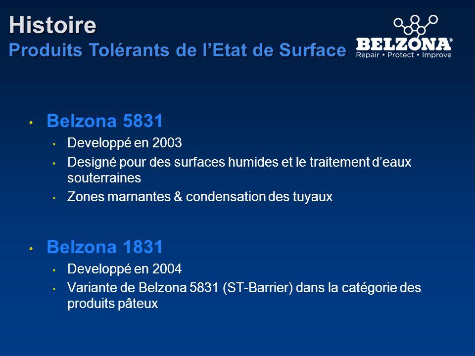 Histoire Produits Tolérants de l'Etat de Surface Belzona 5831