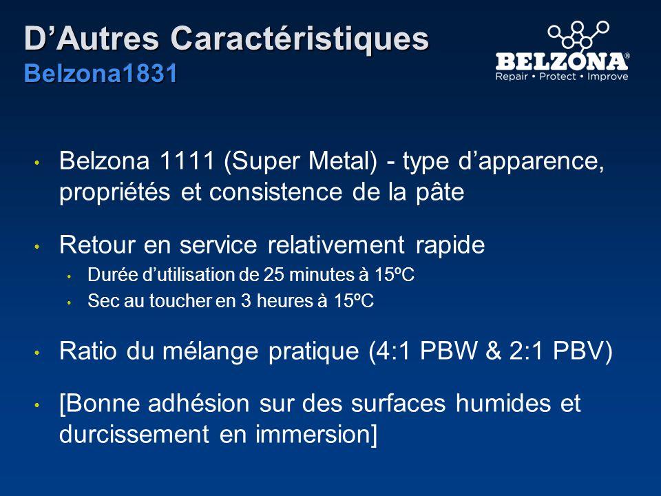 D'Autres Caractéristiques Belzona1831