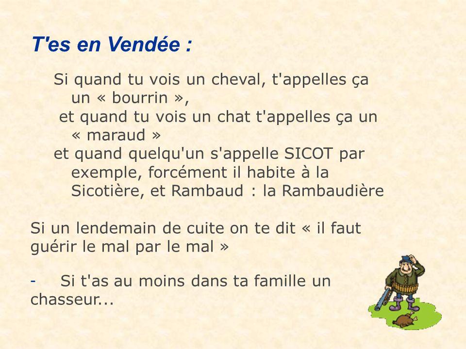 T es en Vendée : Si quand tu vois un cheval, t appelles ça un « bourrin », et quand tu vois un chat t appelles ça un « maraud »