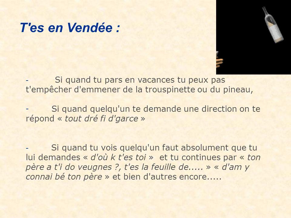 T es en Vendée : - Si quand tu pars en vacances tu peux pas t empêcher d emmener de la trouspinette ou du pineau,