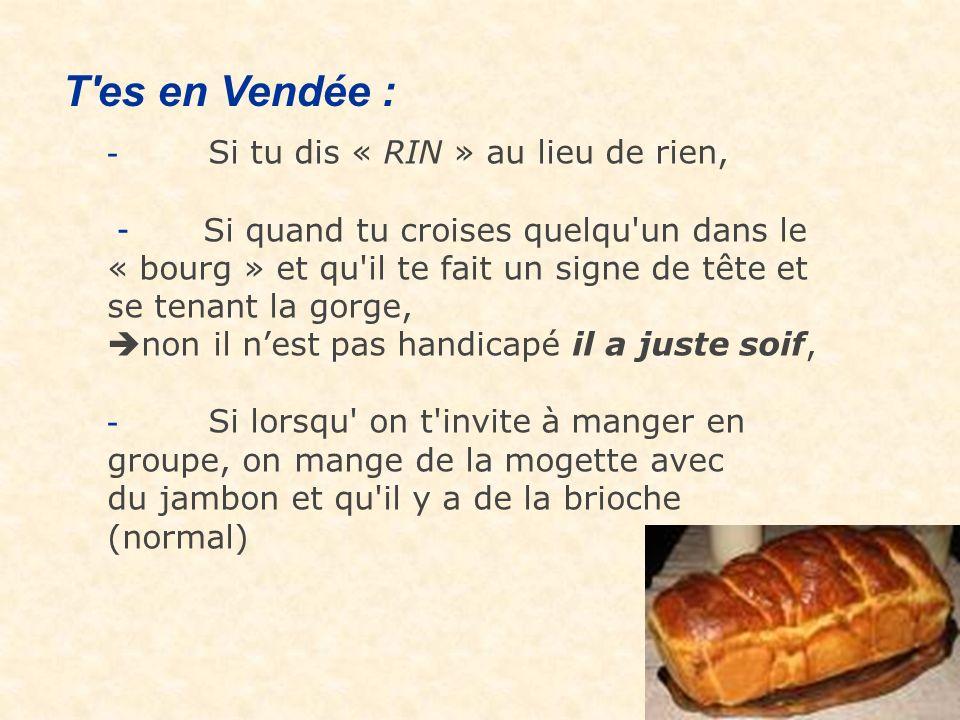 T es en Vendée : - Si tu dis « RIN » au lieu de rien,