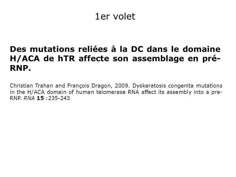1er voletDes mutations reliées à la DC dans le domaine H/ACA de hTR affecte son assemblage en pré-RNP.