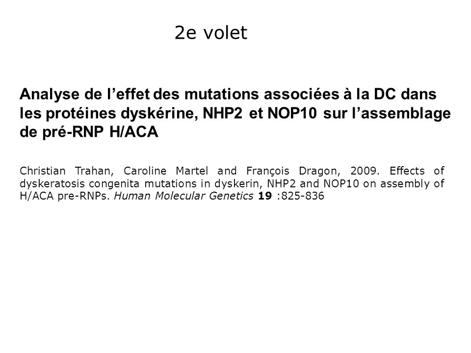 2e voletAnalyse de l'effet des mutations associées à la DC dans les protéines dyskérine, NHP2 et NOP10 sur l'assemblage de pré-RNP H/ACA.
