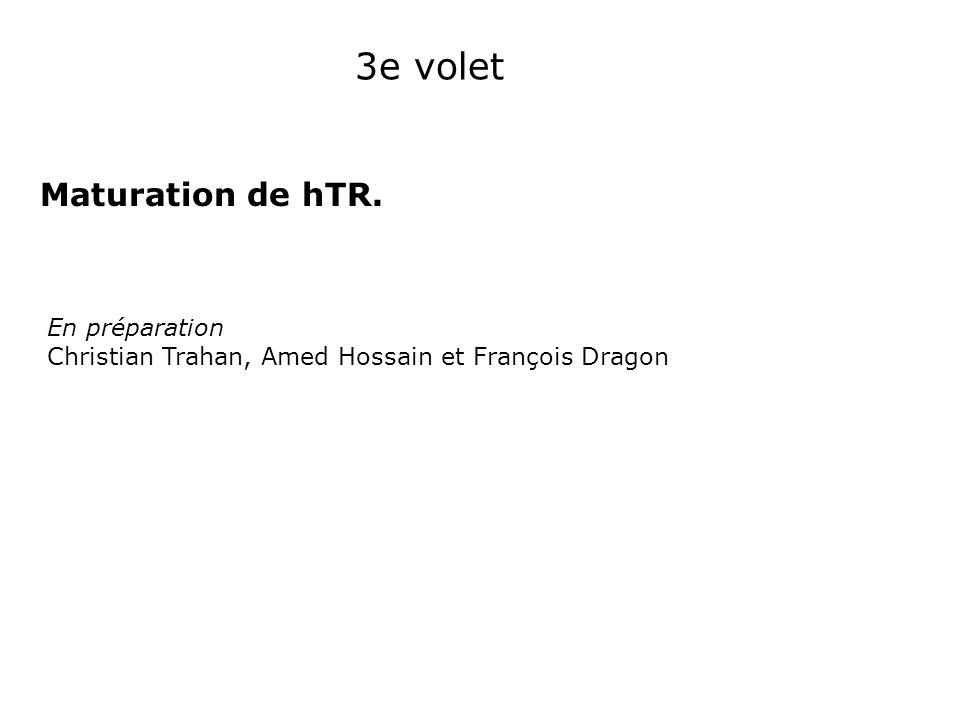 3e volet Maturation de hTR. En préparation