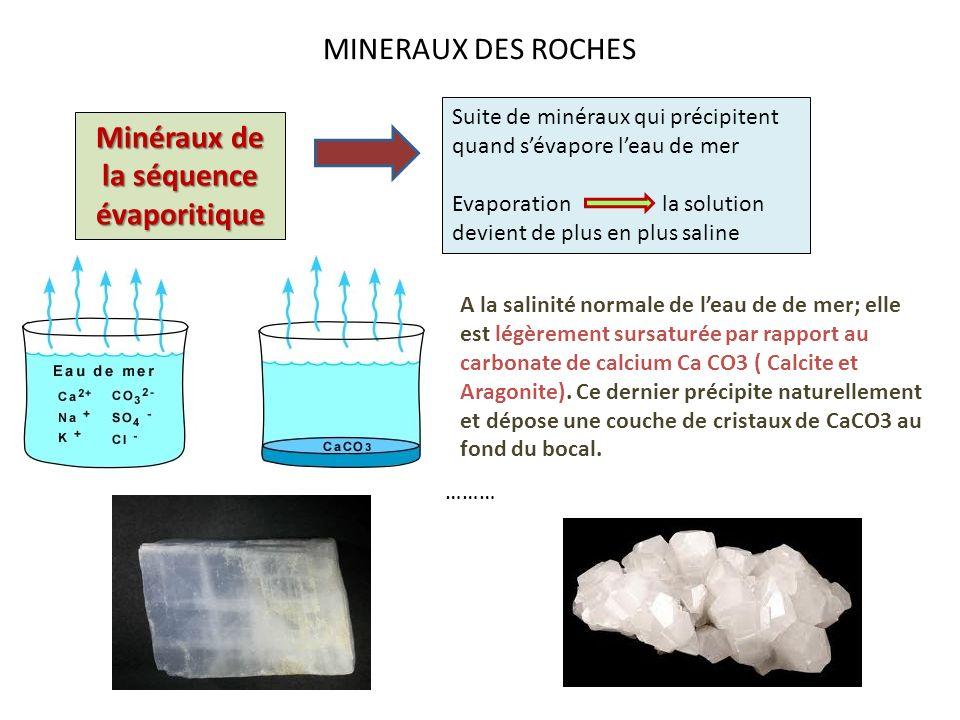 Minéraux de la séquence évaporitique