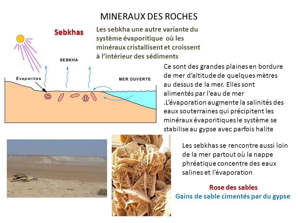 MINERAUX DES ROCHES Sebkhas