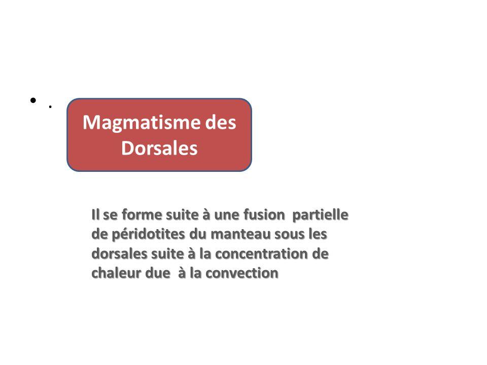 Magmatisme des Dorsales