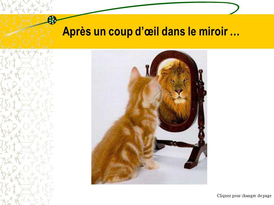 Après un coup d'œil dans le miroir …