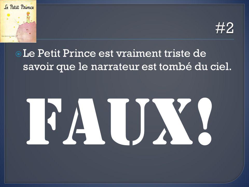 #2 Le Petit Prince est vraiment triste de savoir que le narrateur est tombé du ciel. FAUX!