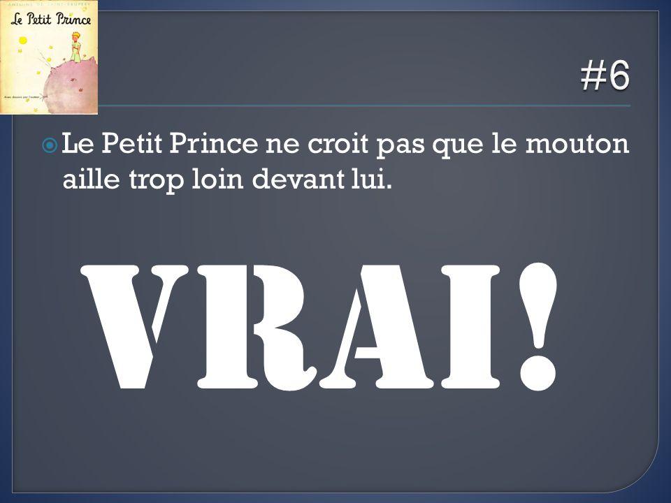 #6 Le Petit Prince ne croit pas que le mouton aille trop loin devant lui. VRAI!