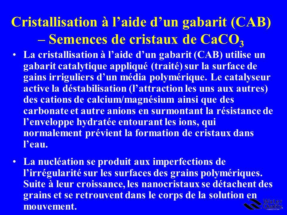 Cristallisation à l'aide d'un gabarit (CAB) – Semences de cristaux de CaCO3