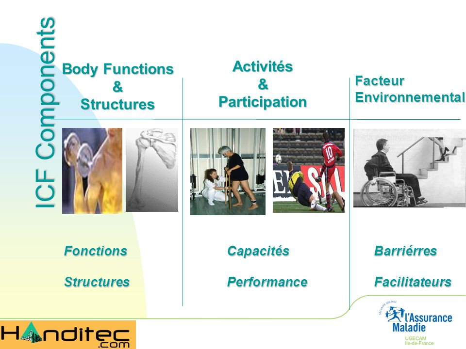 ICF Components Activités Body Functions & & Participation Structures