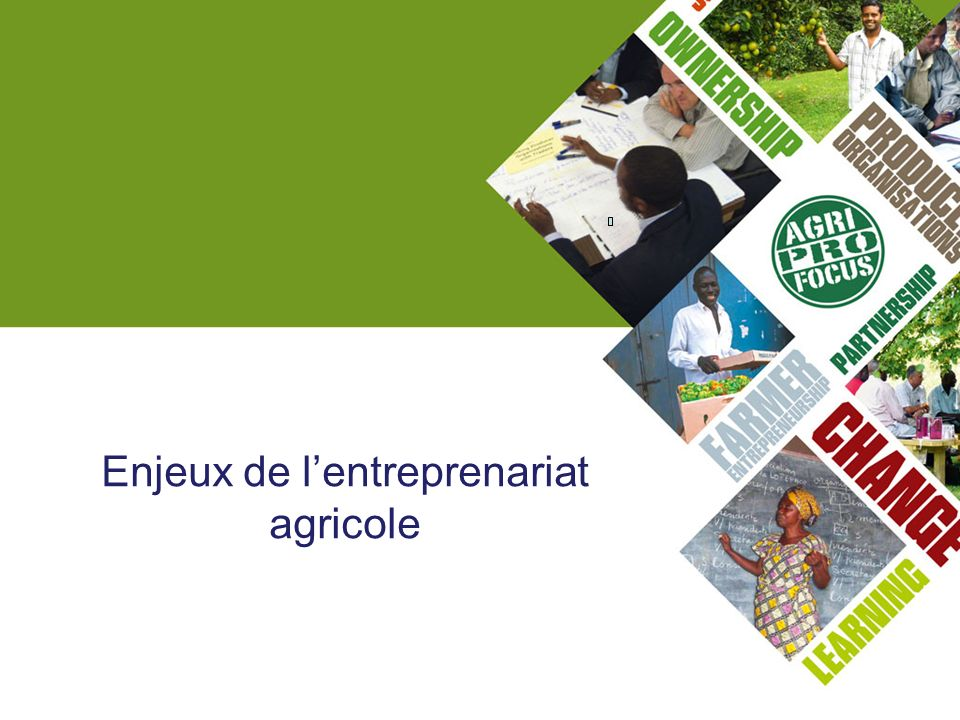 Enjeux de l'entreprenariat agricole