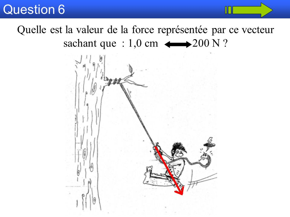 Question 6 Quelle est la valeur de la force représentée par ce vecteur sachant que : 1,0 cm 200 N