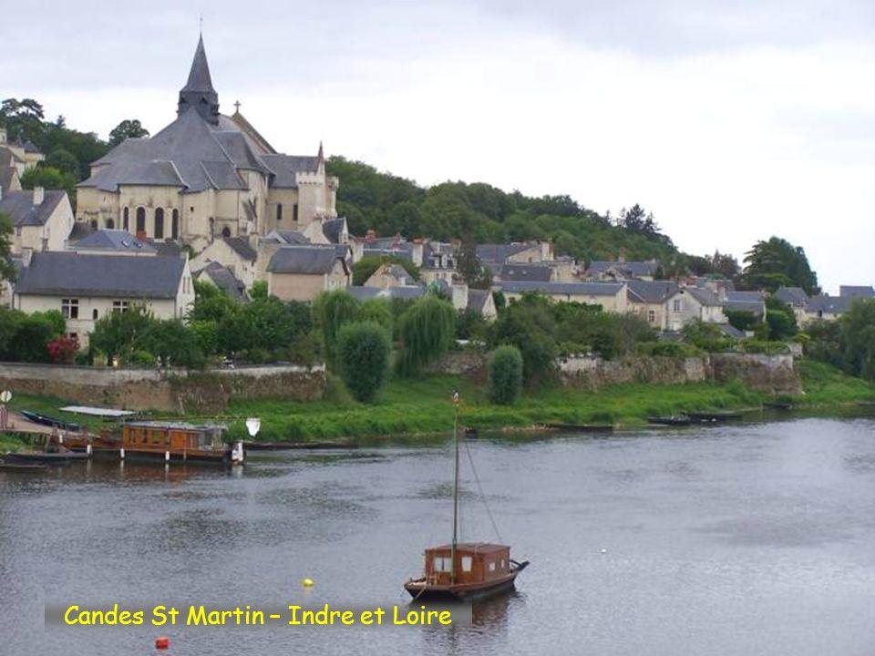 Candes St Martin – Indre et Loire