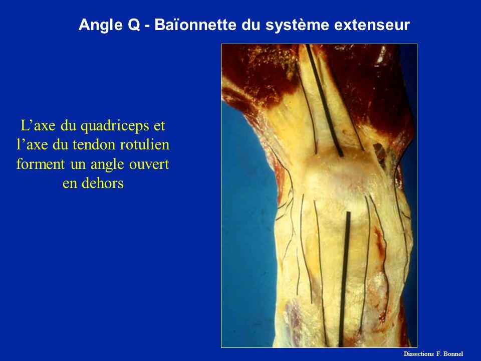 Angle Q - Baïonnette du système extenseur