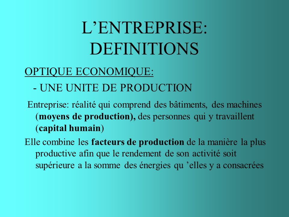 L'ENTREPRISE: DEFINITIONS