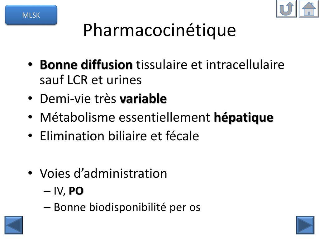 Outil de formation en antibiothérapie - ppt télécharger