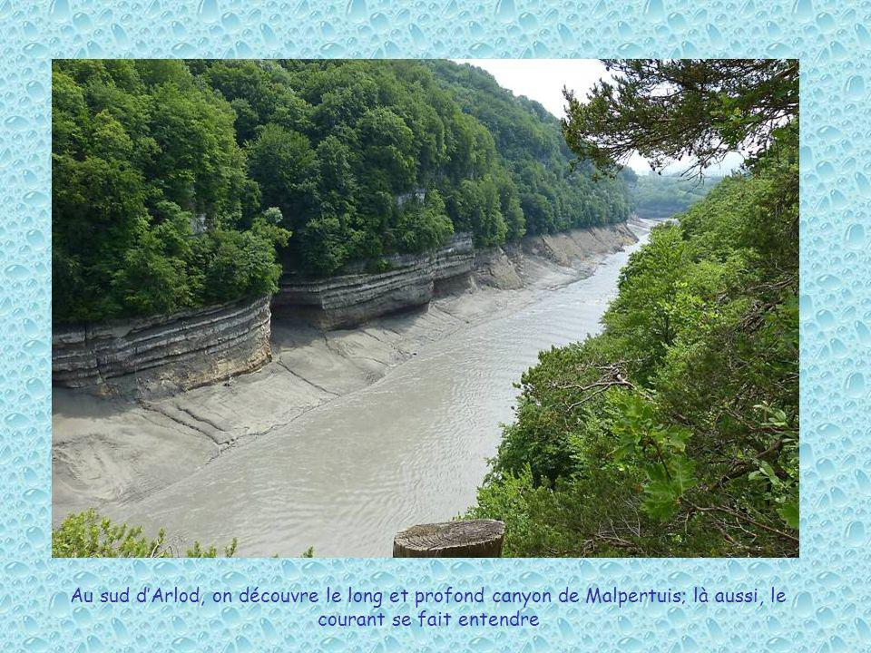 Au sud d'Arlod, on découvre le long et profond canyon de Malpertuis; là aussi, le courant se fait entendre