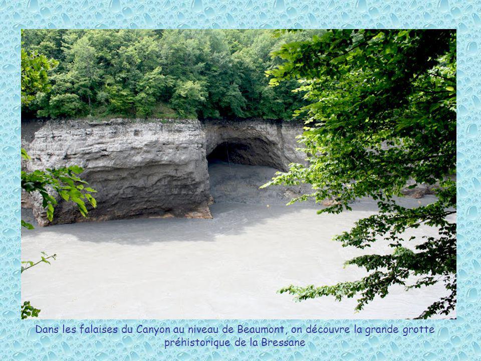 Dans les falaises du Canyon au niveau de Beaumont, on découvre la grande grotte préhistorique de la Bressane