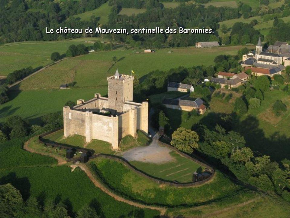 Le château de Mauvezin, sentinelle des Baronnies.
