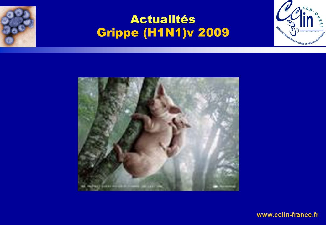 Actualités Grippe (H1N1)v 2009