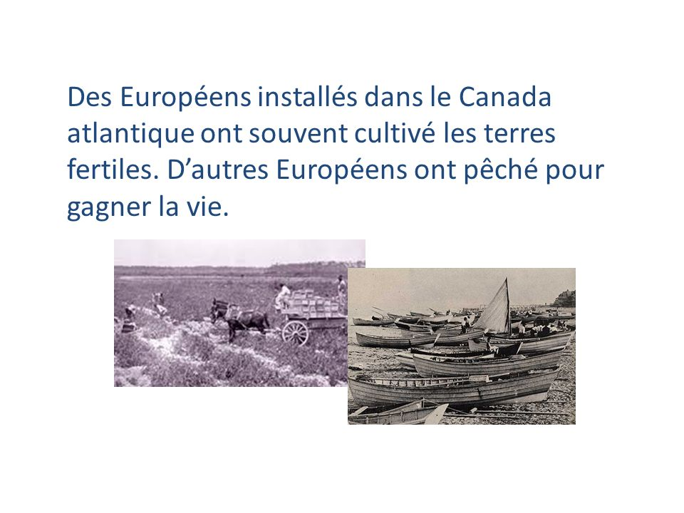 Des Européens installés dans le Canada atlantique ont souvent cultivé les terres fertiles.