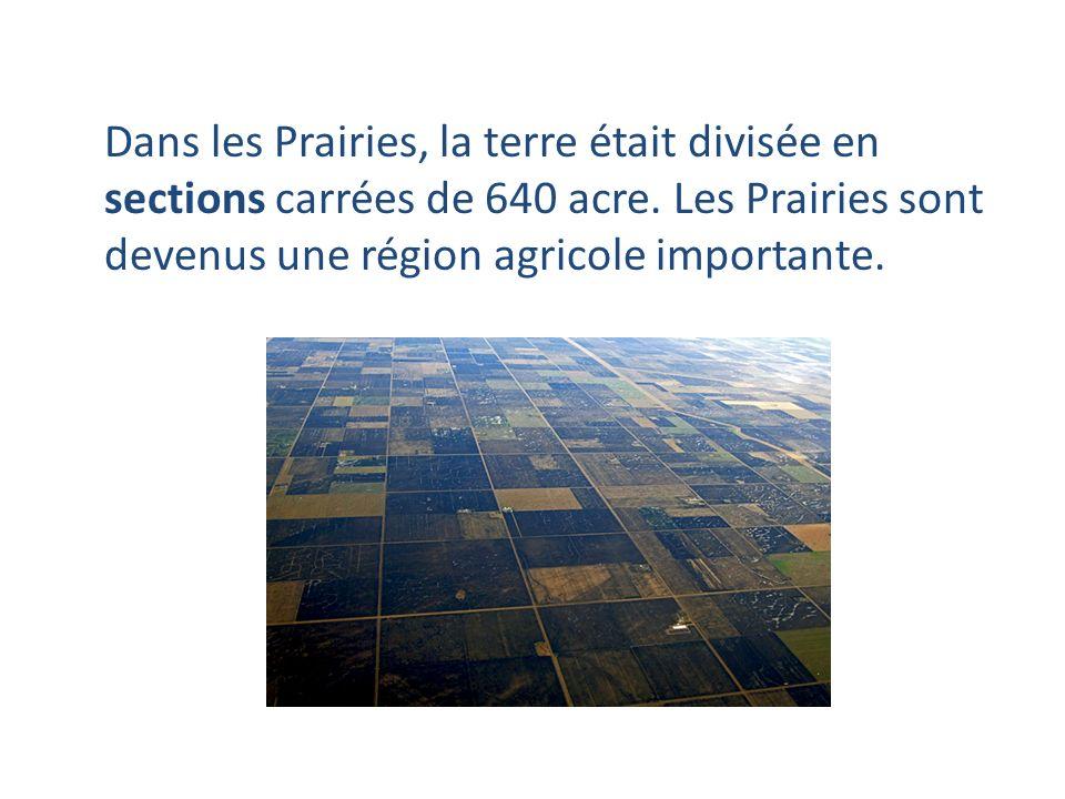 Dans les Prairies, la terre était divisée en sections carrées de 640 acre.
