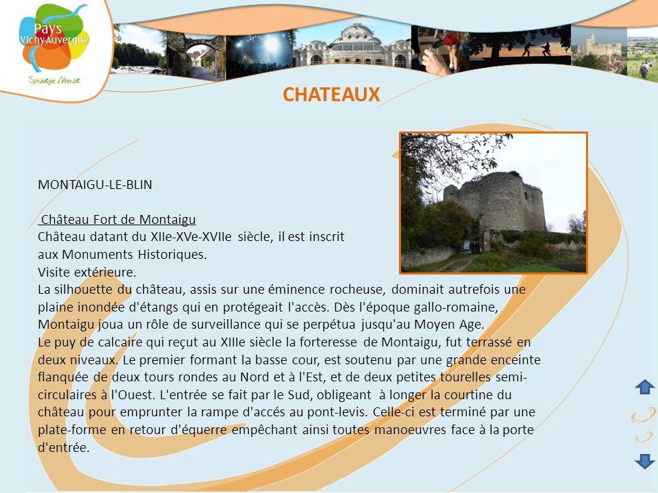 CHATEAUX MONTAIGU-LE-BLIN Château Fort de Montaigu