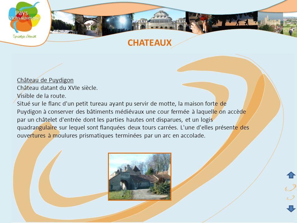 CHATEAUX Château de Puydigon Château datant du XVIe siècle.