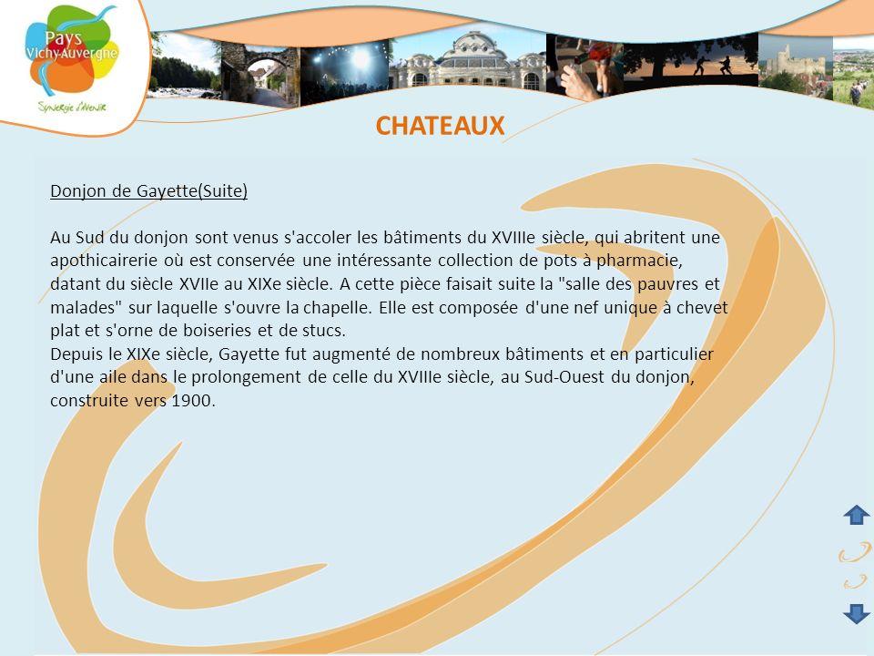 CHATEAUX Donjon de Gayette(Suite)