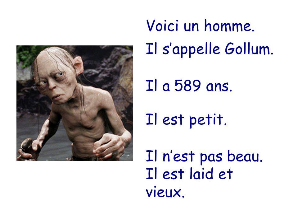 Voici un homme. Il s'appelle Gollum. Il a 589 ans.
