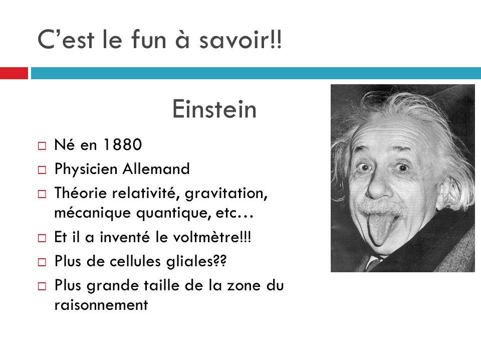 C'est le fun à savoir!! Einstein Né en 1880 Physicien Allemand