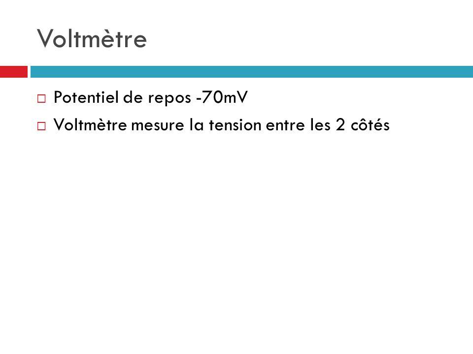 Voltmètre Potentiel de repos -70mV