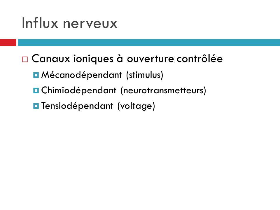 Influx nerveux Canaux ioniques à ouverture contrôlée