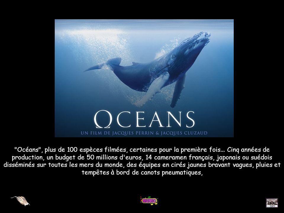 Océans , plus de 100 espèces filmées, certaines pour la première fois